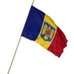 Steag Romania cu emblema