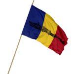 Steag Romania cu Lupul Dacic