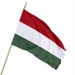 Drapel national UNGARIA
